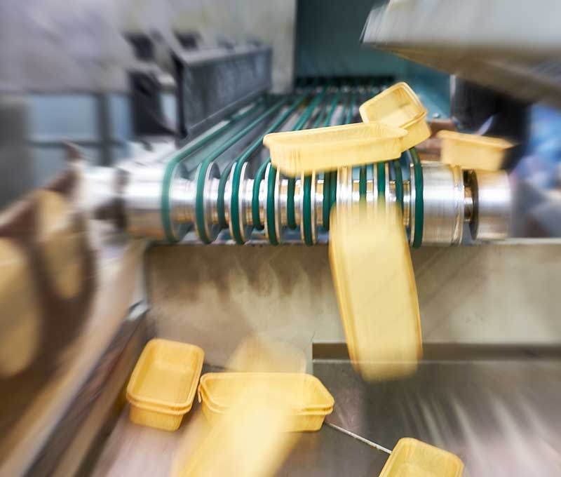 Novacart produzione stampi plum cake