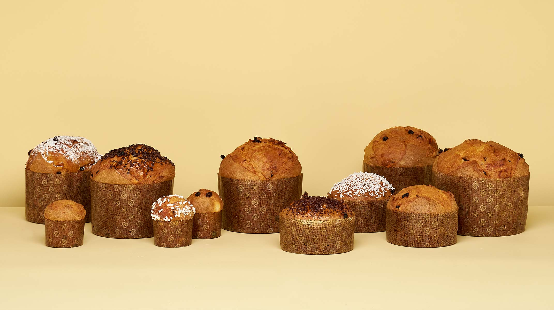 Novacart Russia panettone molds